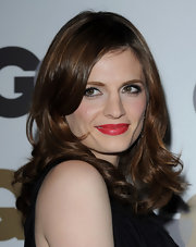 Stana Katic looked stunning as she showed off her radiant curls on the red carpet.