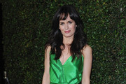 Elizabeth Reaser Cocktail Dress