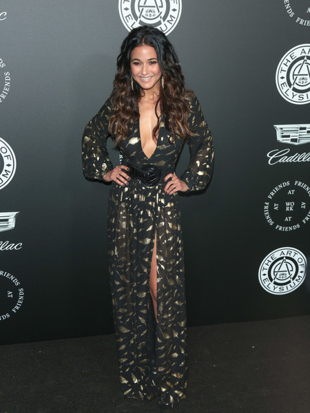 Emmanuelle Chriqui Print Dress