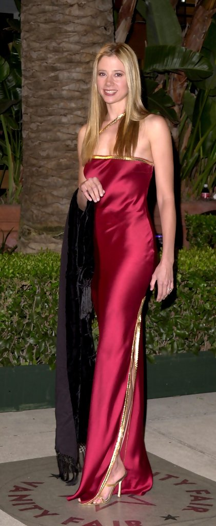 Mira Sorvino Evening Dress Mira Sorvino Looks Stylebistro