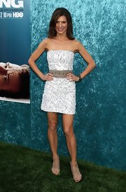 Perrey Reeves showed off her beaded strapless dress while hitting the Hung premiere.