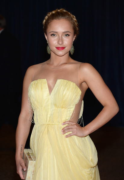 More Pics of Hayden Panettiere Braided Updo (1 of 5) - Updos Lookbook - StyleBistro