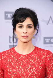 Sarah Silverman made an elegant appearance at the AFI Life Achievement Award Gala wearing this messy-glam updo.