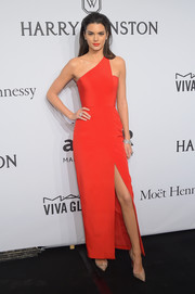 Kendall Jenner worked a fierce red one-shoulder gown by Romona Keveza at the amfAR New York Gala.