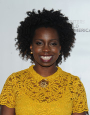 Adepero Oduye sported her natural curls at the 2016 Writers Guild Awards.