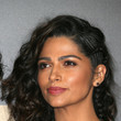 Camila Alves's Partial Braids