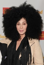 Cher was easily the center of attention with this massive Afro at the GLAAD Media Awards.