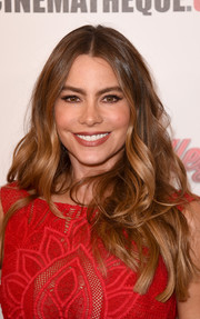 Sofia Vergara attended the American Cinematheque Award wearing her signature center-parted, high-volume waves.