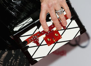 Julianne Moore carried a chic monochrome Louis Vuitton box clutch at the AFI FEST 2014 screening of 'Still Alice.'