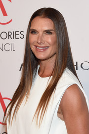 Brooke Shields wore her hair long and pin-straight at the 2017 ACE Awards.