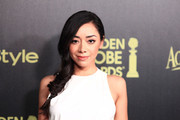 Aimee Garcia Loose Braid