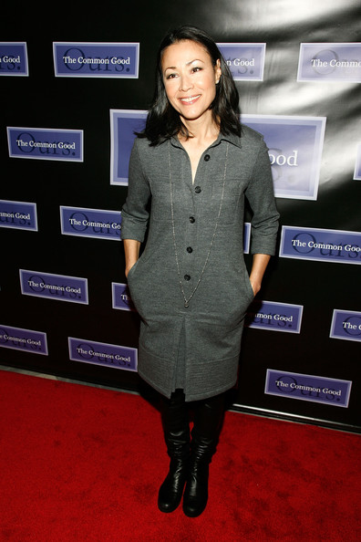 Ann Curry Shirtdress