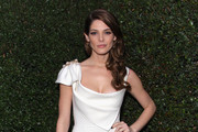 Ashley Greene Evening Dress