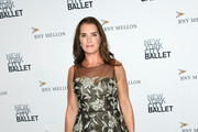 Brooke Shields Embroidered Dress