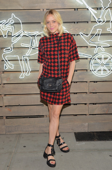 Chloe Sevigny Leather Shoulder Bag