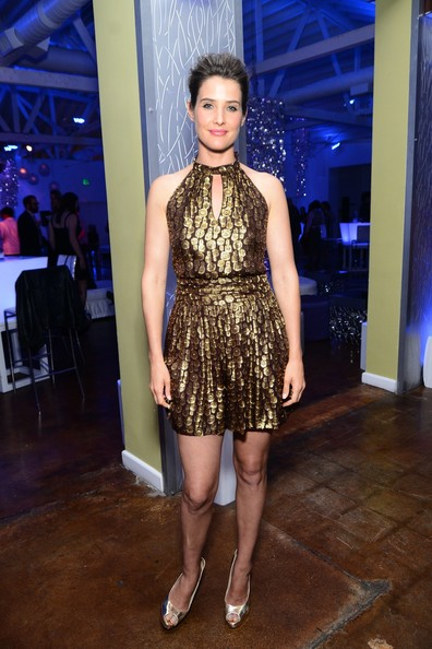 Cobie Smulders Cocktail Dress