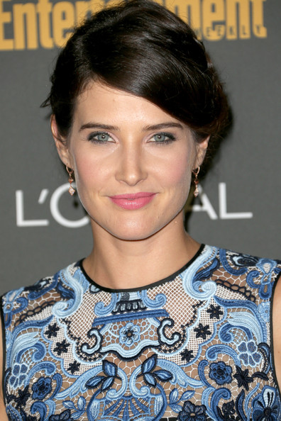 Cobie Smulders Braided Updo