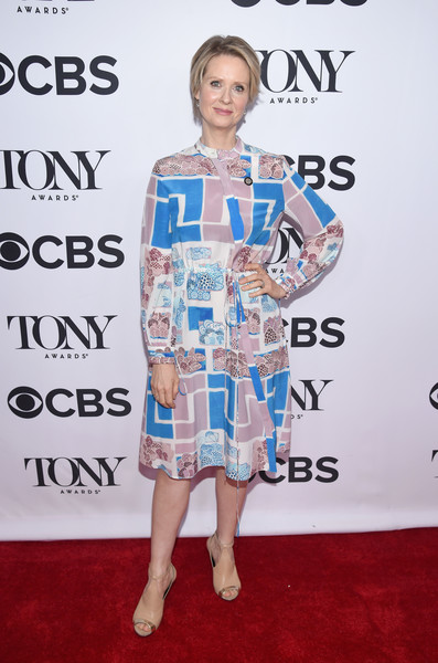 Cynthia Nixon Print Dress