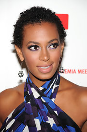 Solange showed off a cool pair of crown dangle earrings while hitting the red carpet.