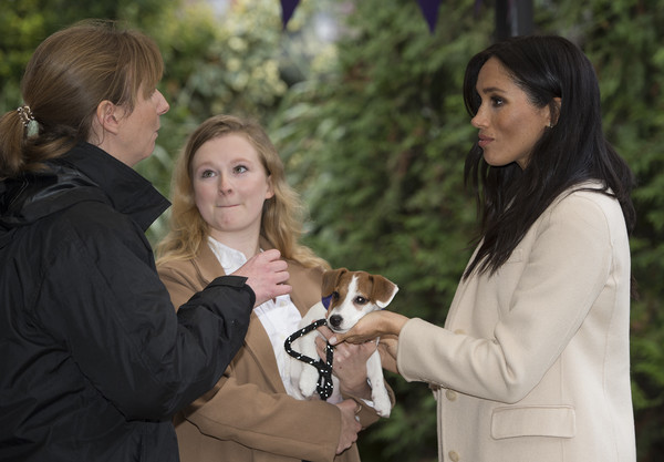 More Pics of Meghan Markle Chain Strap Bag (3 of 46) - Shoulder Bags Lookbook - StyleBistro [fun,tree,event,formal wear,smile,photography,gesture,plant,fawn,family,meghan,zoe edwards,emma driver,mayhew,sussex,duchess,duchess of sussex visits mayhew,animal welfare charity,maggi,visit]