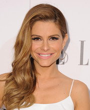 Maria Menounos wore a gorgeous wavy side sweep at the Elle Women in Television celebration.