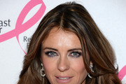 Elizabeth Hurley Metallic Eyeshadow