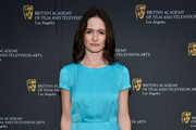 Emily Mortimer Day Dress