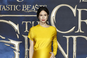 Katherine Waterston Maternity Dress