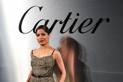 Freida Pinto Evening Dress