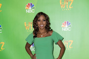 Holly Robinson Peete Form-Fitting Dress