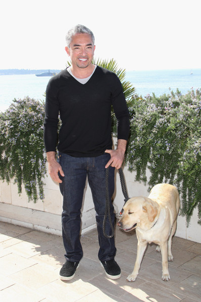 Cesar dons a black v-neck sweater while out walking with his Golden lab.