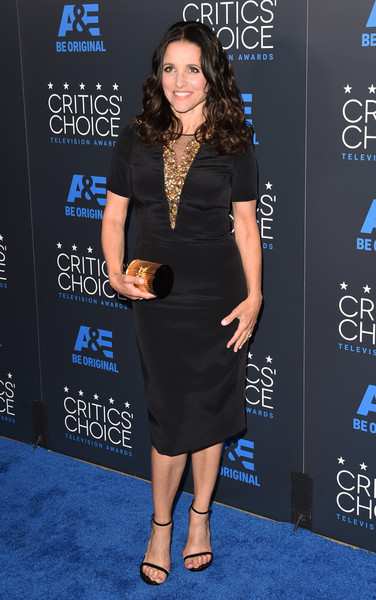 Julia Louis-Dreyfus Tube Clutch