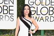 Julia Louis-Dreyfus One Shoulder Dress