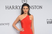 Kendall Jenner One Shoulder Dress