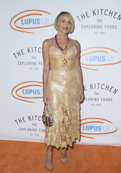 Sharon Stone got glammed up in a gold lace slip dress for the 2017 Orange Ball.
