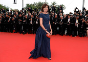 Ines de la Fressange sashayed down the 'Mad Max: Fury Road' Cannes red carpet wearing a bustled blue ball gown.