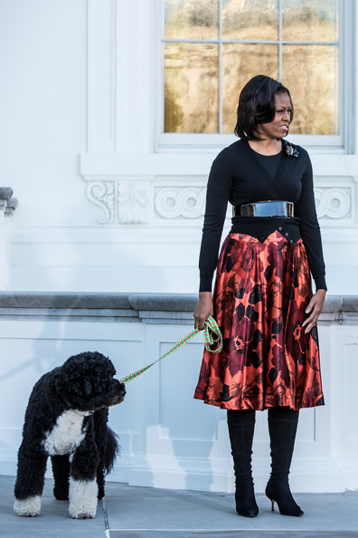 Michelle Obama Knee Length Skirt