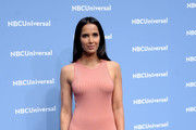 Padma Lakshmi Form-Fitting Dress