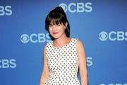 Pauley Perrette Print Dress