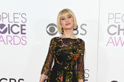 Chelsea Kane Sheer Dress