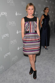 Radha Mitchell chose a colorful striped dress for her 'Dior and I' premiere look.