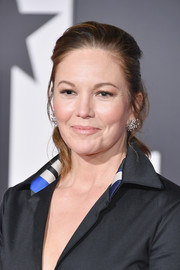 Diane Lane attended the premiere of 'Justice League' wearing her hair in a simple ponytail.