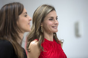 Queen Letizia of Spain dolled up her look with a pair of gold dangle earrings by TOUS for a Cervantes Institutes meeting.