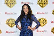 Rosario Dawson Lace Dress