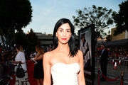 Sarah Silverman Strapless Dress
