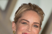 Sharon Stone Messy Updo