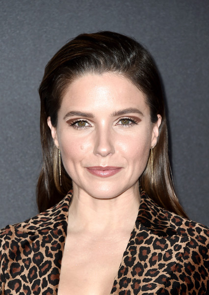 Sophia Bush Long Straight Cut [hair,face,hairstyle,eyebrow,lip,beauty,chin,forehead,brown hair,blond,the beverly hilton hotel,beverly hills,california,22nd annual hollywood film awards - arrivals,annual hollywood film awards,sophia bush]