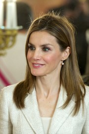 Princess Letizia sported a casual layered cut while attending an audience for the National Armed Forces Day.