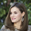 Queen Letizia of Spain's Polished Perfection
