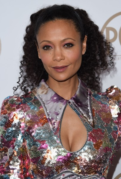 Thandiwe Newton Half Up Half Down [image,hair,hairstyle,beauty,long hair,black hair,premiere,brown hair,fashion model,thandie newton,hairstyle,red carpet,hair,beauty,hair,model,brown hair,annual producers guild awards,thandiwe newton,fashion,hairstyle,beauty,eye shadow,hair coloring,image,model,lipstick,photograph]